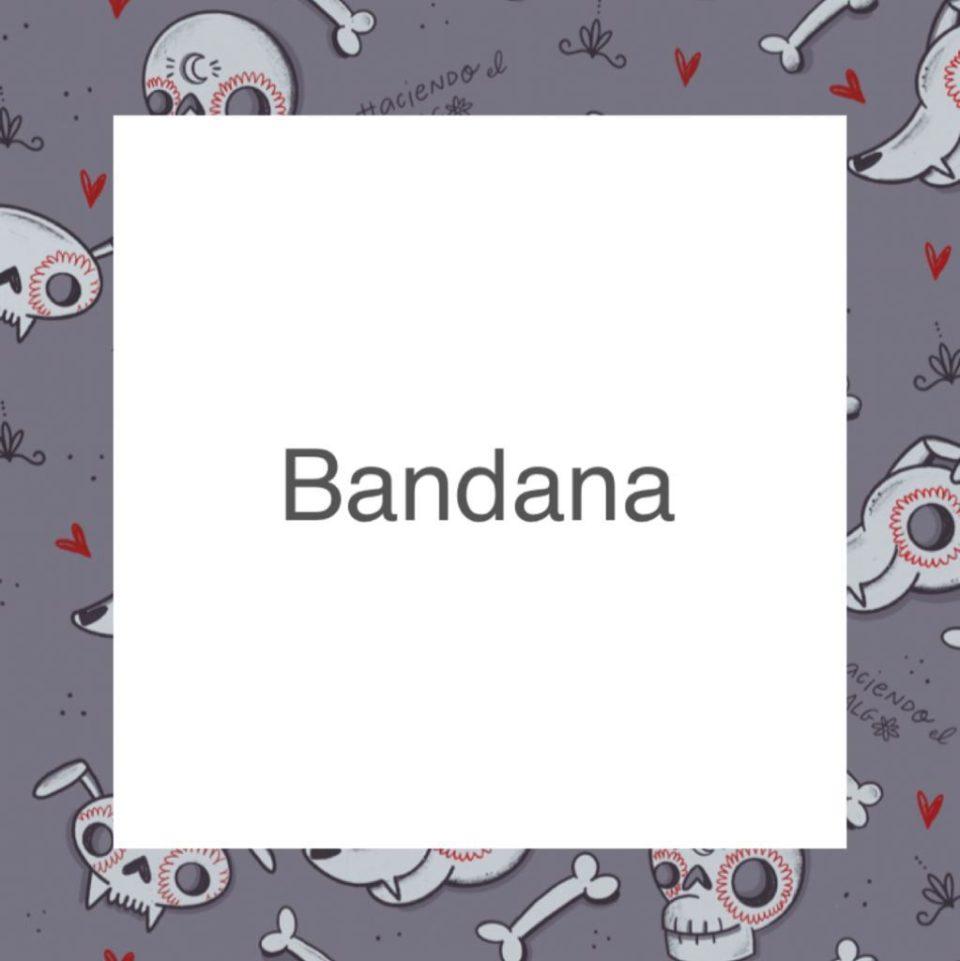 Badana – Haciendo el galgo – Semitransparente – Gris